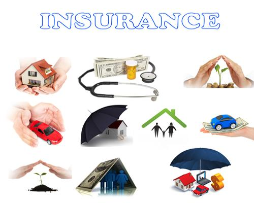 Various Types of Insurance Coverage