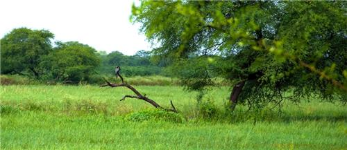 Geography of Bharatpur