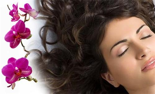Beauty Parlors in Bharuch