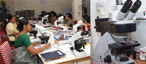 Pathology Labs in Bhind
