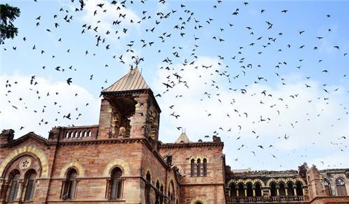 Tourist Spots in Bhuj