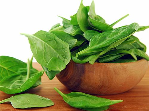Nature and Food Care Centers in Bhuj