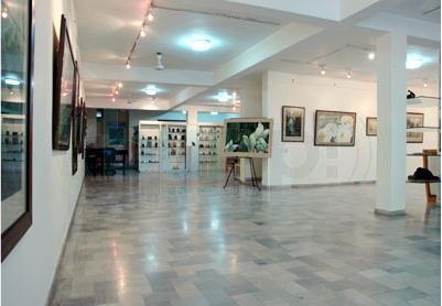 Art Galleries in Chandigarh