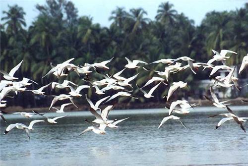 Sukhna Wildlife in Chandigarh