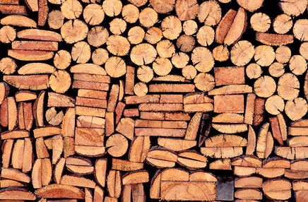 Wood Industry in Chikmagalur