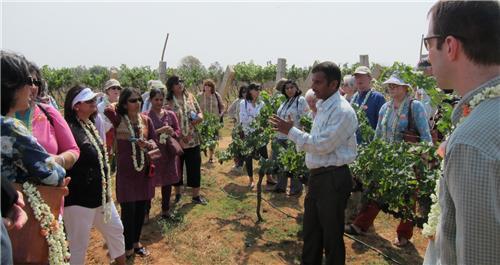 Wine Tourism in Bangalore