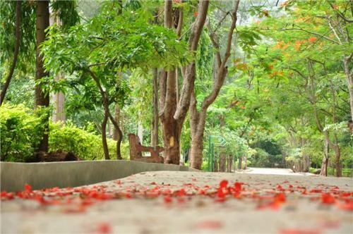 Salem Karuvampatti Zoological Park