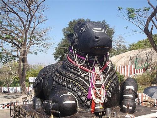The Bull Temple Bangalore
