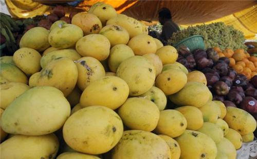 Mangoes in Salem