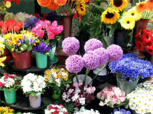 Florists in Bangalore