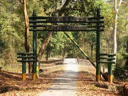 Mahananda Wildlife Sanctuary near Siliguri