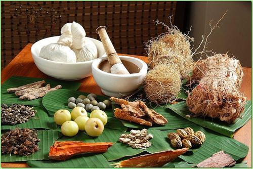 Ayurvedic treatments in Daman