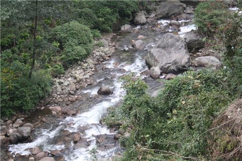 Srikhola River Stream at Srikhola in Darjeeling