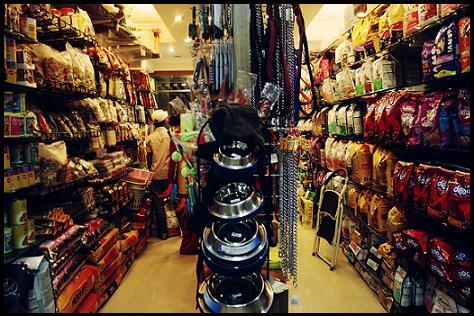 Pet Shops in Dehradun