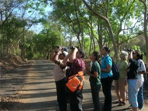 Indira Priyadarshini Wildlife Sanctuary