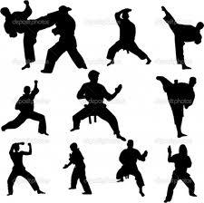 Karate in Delhi