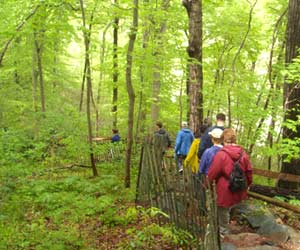 Adventure getaways from Delhi