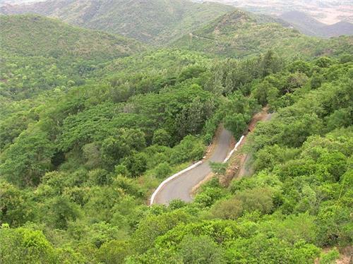 Road view Sirumalai View Point