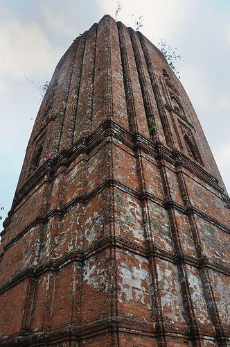 Watch Tower in Garh Jungle