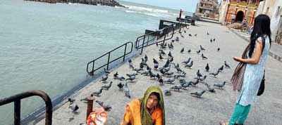 Lifestyle in Dwarka