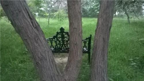 Picnic spots in Faridabad