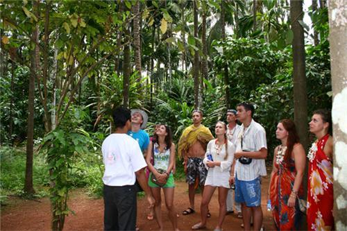 Evolution of spice plantation in Goa