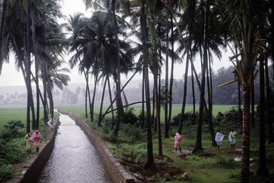Goa During the Monsoon Season