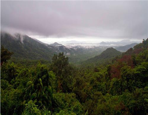 Bhagwan Mahveer Sanctuary and Mollem National Park-Credit Panoramia