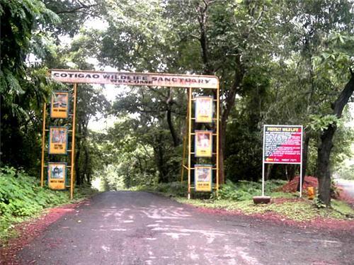 Wildlife Sanctuaries near Panaji