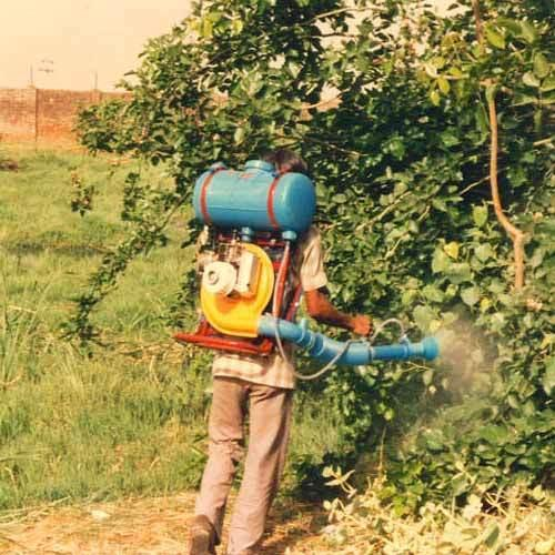 Pest Control Services in Panaji