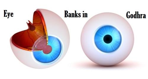 Godhra Eye Banks