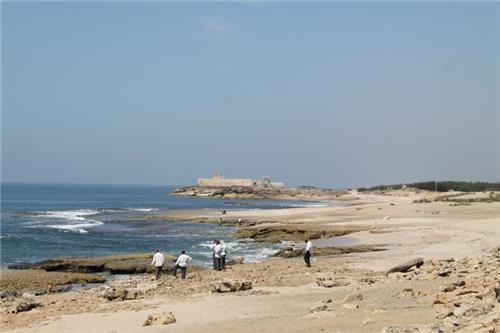 Chorwad Beach in Gujarat