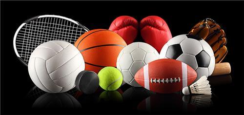 Sports in Guna