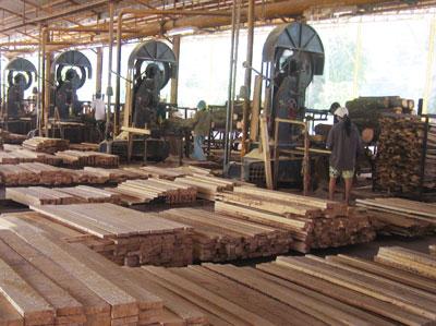 Carpenters and wood merchants in Hanumangarh
