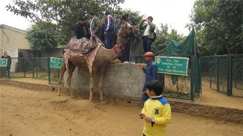 Unique family destinations in Haryana