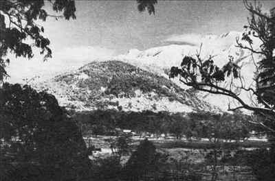 History of Palampur