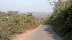 How to reach Dasuya Forest Division in Hoshiarpur