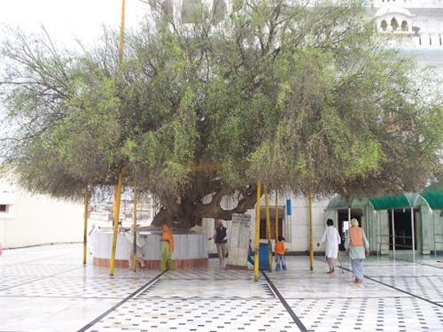 Religious places of Hoshiarpur