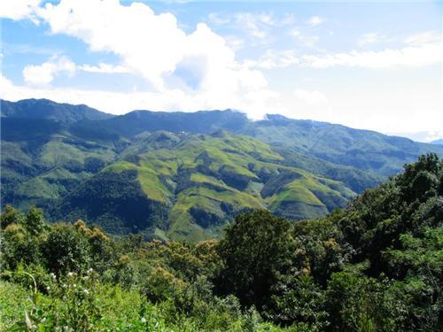 Imphal to Nagaland