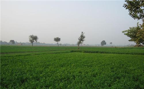 Climate in Jagadhri