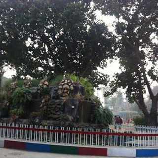 Natural Beauty at Nikku Park in Jalandhar
