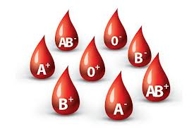Well known Blood Banks in Jalandhar