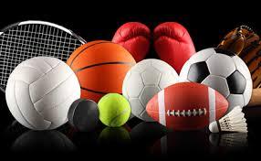 Sport Goods Industries in Jalandhar