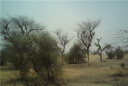 Terrain in Jhunjhunu