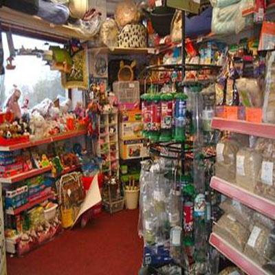 Pet shops in Jodhpur
