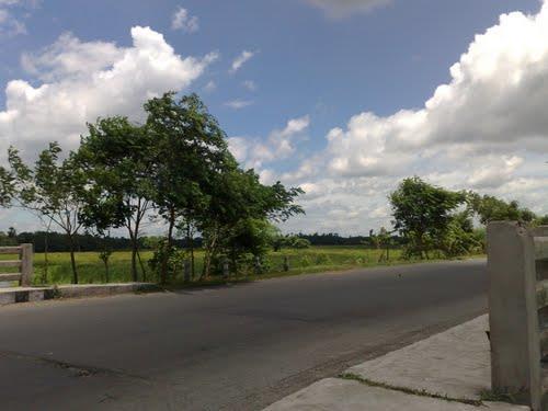 Kalyani to Mayapur   by Road