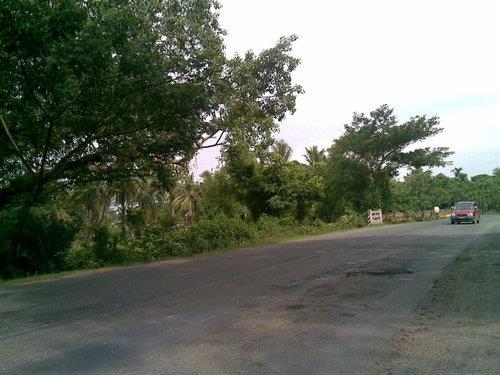 Road Trip from Kalyani to   Mayapur