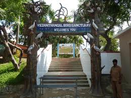 Vedanthangal Bird Sanctuary in Kancheepuram