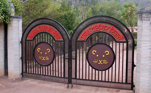 Wildlife in Khajuraho