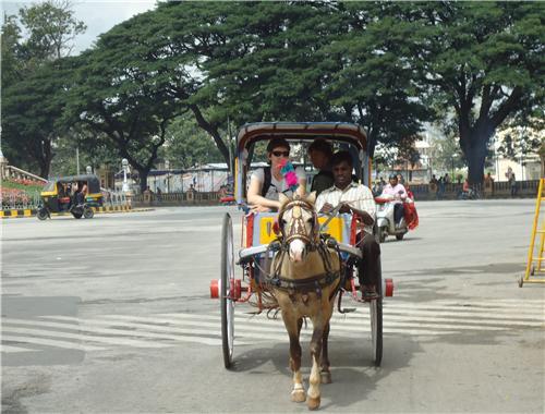 Local Transport in Khajuraho